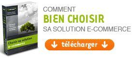 Bien choisir-solution-ecommerce